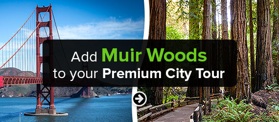 Click here to Add Muir Woods to your Premium City Tour!