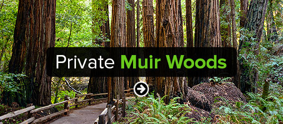 Private Muir Woods Tours